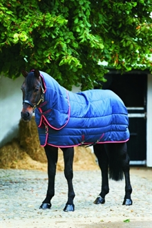 AMIGO stable vari-layer PLUS Medium 250 gram