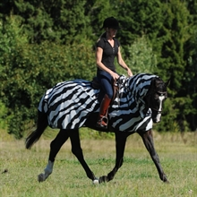 Bucas Buzz-Off Riding ridtäcke Zebra