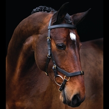 Rambo Micklem Multi bridle